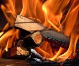 Lychee Firewood
